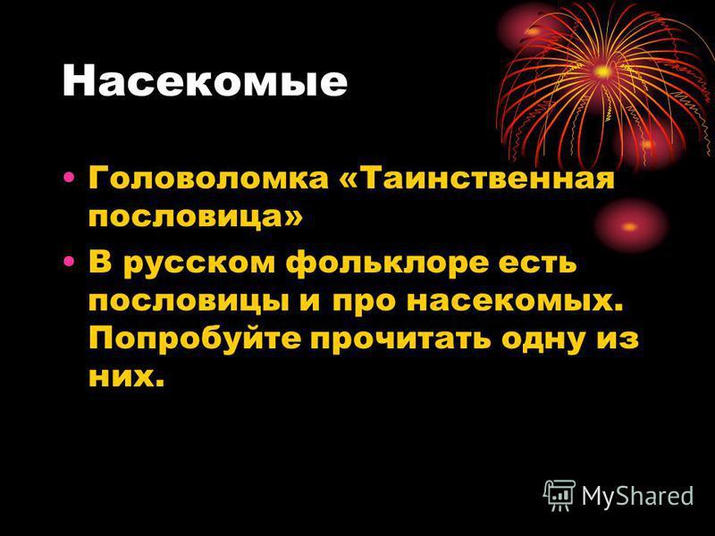 Насекомые Головоломка «Таинственная пословица» В русском фольклоре есть пословицы и про насекомых. Попробуйте прочитать одну из них.
