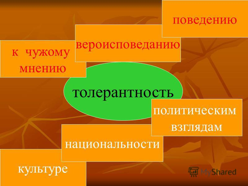 толерантность к чужому мнению культуре национальности вероисповеданию политическим взглядам поведению