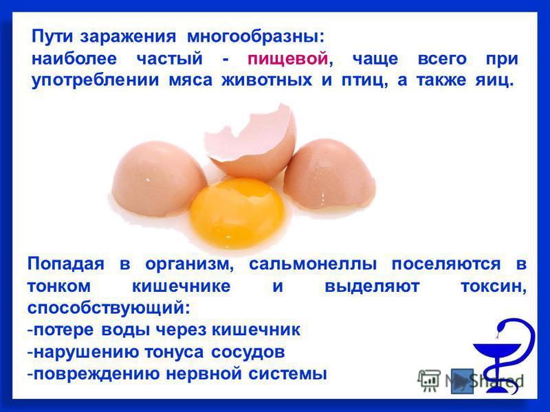 Пути заражения многообразны: наиболее частый пищевой, чаще всего при употреблении мяса животных и птиц, а также яиц. Попадая в организм, сальмонеллы поселяются в тонком кишечнике и выделяют токсин, способствующий: -потере воды через кишечник -нарушен