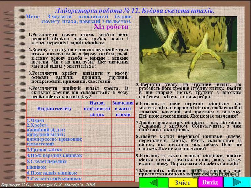 Вихід Зміст Урок 2. Внутрішня будова птахів. Скелет і мускулатура. Лабораторна робота 12. Будова скелета птахів. Мета: З'ясувати будову скелета і м'язів птахів, вказати на особливості їх будови і життєдіяльності, в зв'язку зі здатністю до польоту. Пл