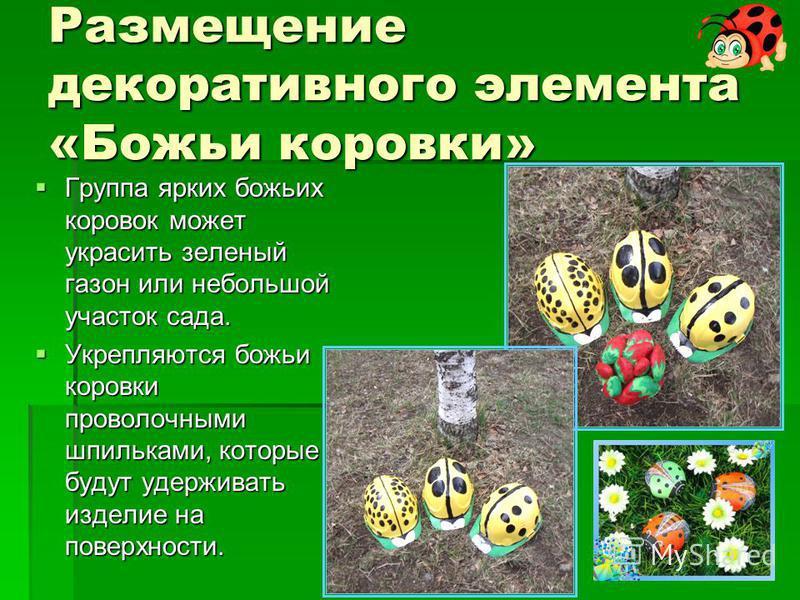Размещение декоративного элемента «Божьи коровки» Группа ярких божьих коровок может украсить зеленый газон или небольшой участок сада. Группа ярких божьих коровок может украсить зеленый газон или небольшой участок сада. Укрепляются божьи коровки пров