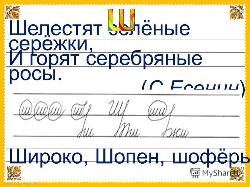 FokinaLida.75@mail.ru Шелестят зелёные серёжки, И горят серебряные росы. (С.Есенин) Широко, Шопен, шофёры.