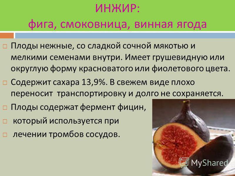 КУМКВАТ Его еще называют кинкан. Он входит в цитрусовую группу. Плоды мелкие в диаметре 1-2 см, яйцевидной формы, золотисто - желтого цвета, с гладкой душистой кожурой. Фрукт едят целиком, вкус кисловато - сладкий.