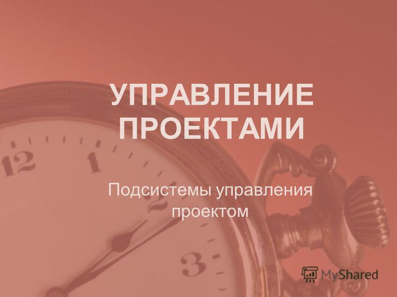 УПРАВЛЕНИЕ ПРОЕКТАМИ Подсистемы управления проектом