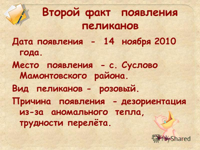 Второй факт появления пеликанов Дата появления - 14 ноября 2010 года. Место появления - с. Суслово Мамонтовского района. Вид пеликанов - розовый. Причина появления - дезориентация из-за аномального тепла, трудности перелёта.
