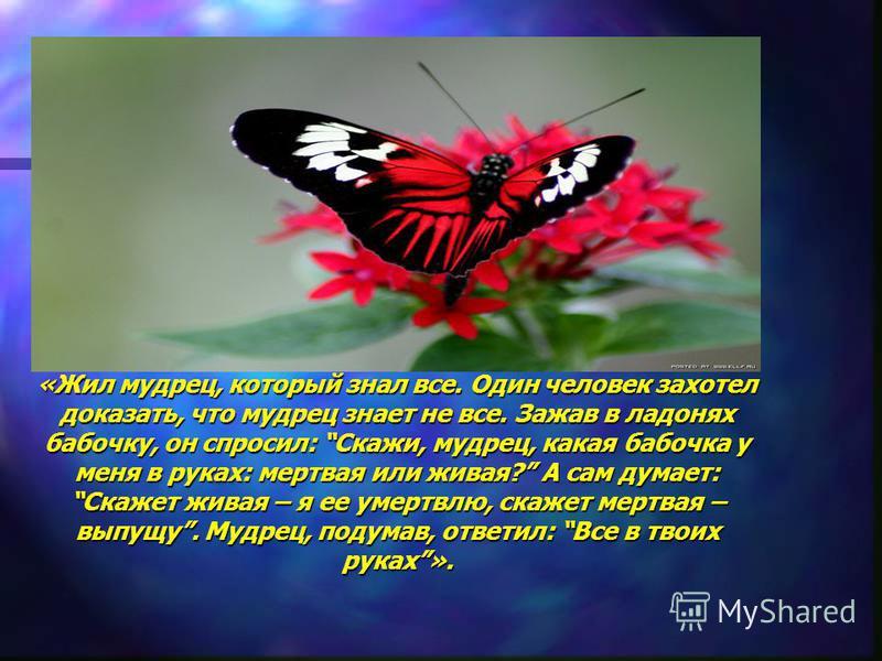 «Жил мудрец, который знал все. Один человек захотел доказать, что мудрец знает не все. Зажав в ладонях бабочку, он спросил: Скажи, мудрец, какая бабочка у меня в руках: мертвая или живая? А сам думает: Скажет живая – я ее омертвлю, скажет мертвая – в