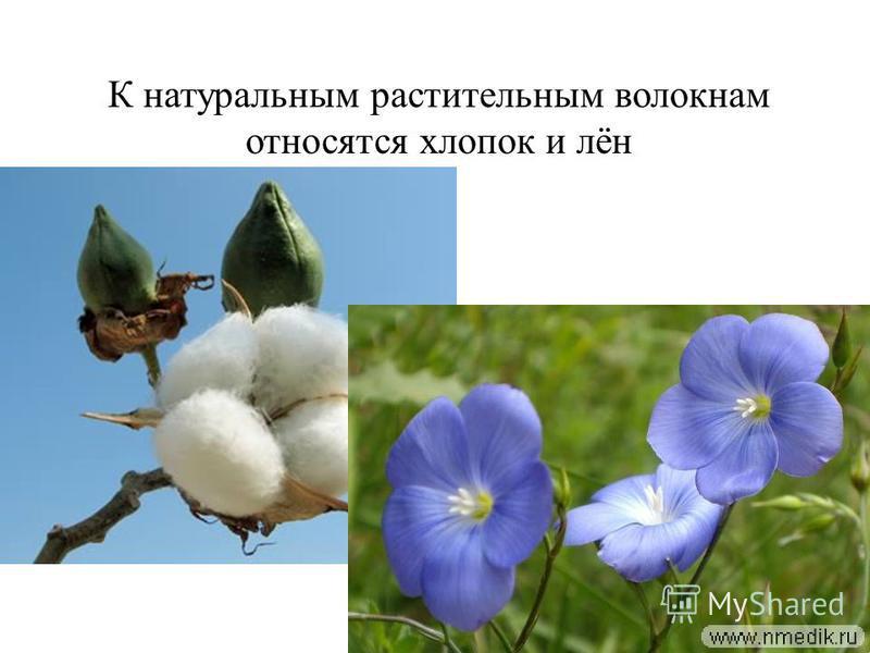 К натуральным растительным волокнам относятся хлопок и лён
