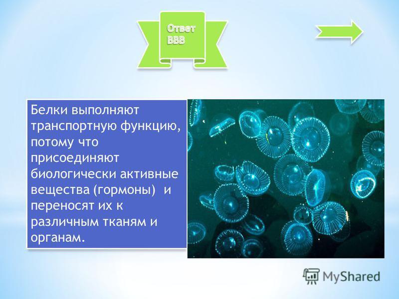 Белки выполняют транспортную функцию, потому что присоединяют биологически активные вещества (гормоны) и переносят их к различным тканям и органам.