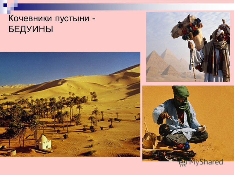 Кочевники пустыни - БЕДУИНЫ