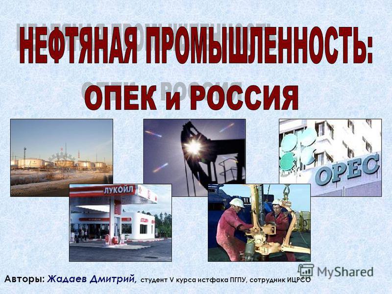 Авторы: Жадаев Дмитрий, студент V курса истфака ПГПУ, сотрудник ИЦРСО