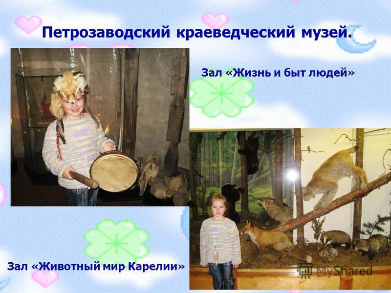 Петрозаводский краеведческий музей. Зал «Животный мир Карелии» Зал «Жизнь и быт людей»