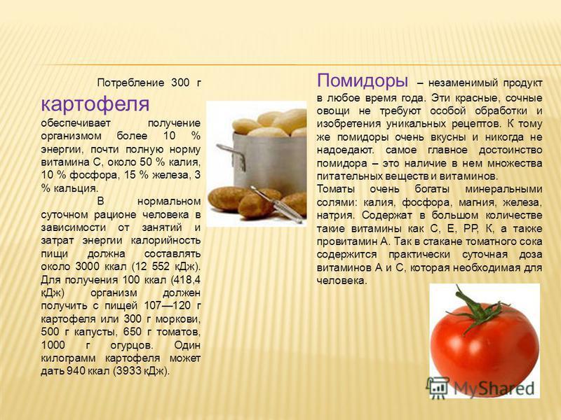 Потребление 300 г картофеля обеспечивает получение организмом более 10 % энергии, почти полную норму витамина С, около 50 % калия, 10 % фосфора, 15 % железа, 3 % кальция. В нормальном суточном рационе человека в зависимости от занятий и затрат энерги