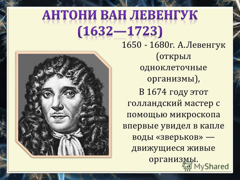 1650 - 1680 г. А. Левенгук ( открыл одноклеточные организмы ), В 1674 году этот голландский мастер с помощью микроскопа впервые увидел в капле воды « зверьков » движущиеся живые организмы.