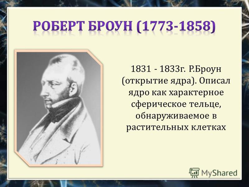 1831 - 1833 г. Р. Броун ( открытие ядра ). Описал ядро как характерное сферическое тельце, обнаруживаемое в растительных клетках