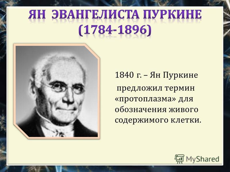 1840 г. – Ян Пуркине предложил термин « протоплазма » для обозначения живого содержимого клетки.