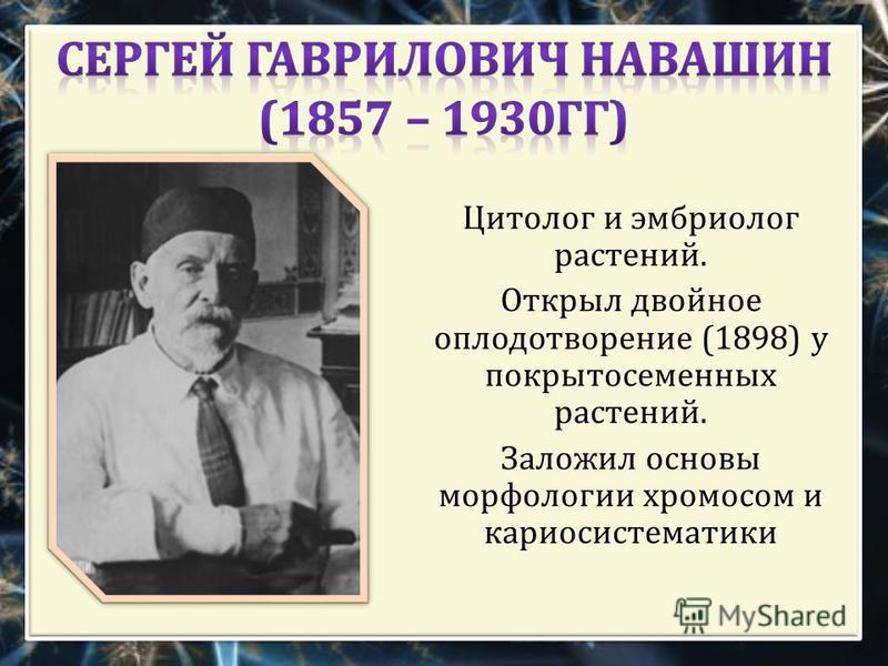 Цитолог и эмбриолог растений. Открыл двойное оплодотворение (1898) у покрытосеменных растений. Заложил основы морфологии хромосом и кариосистематики