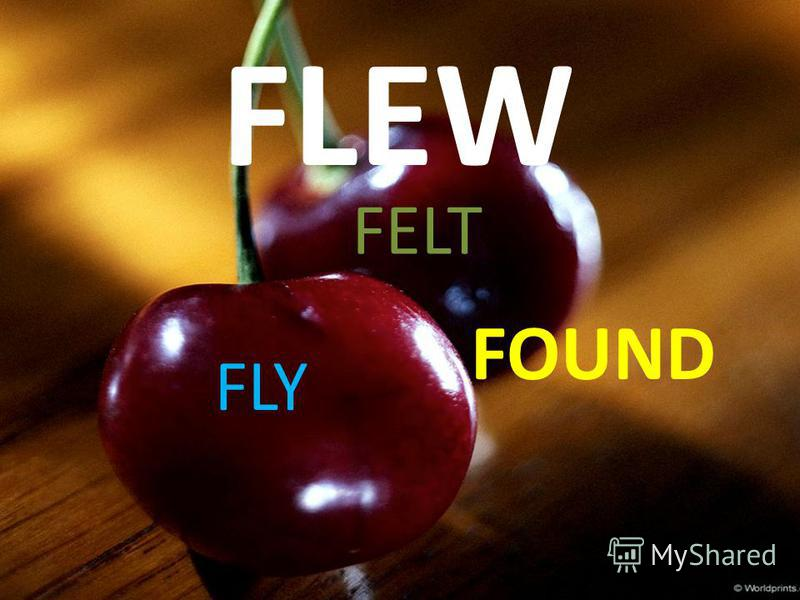 FLEW FELT FOUND FLY