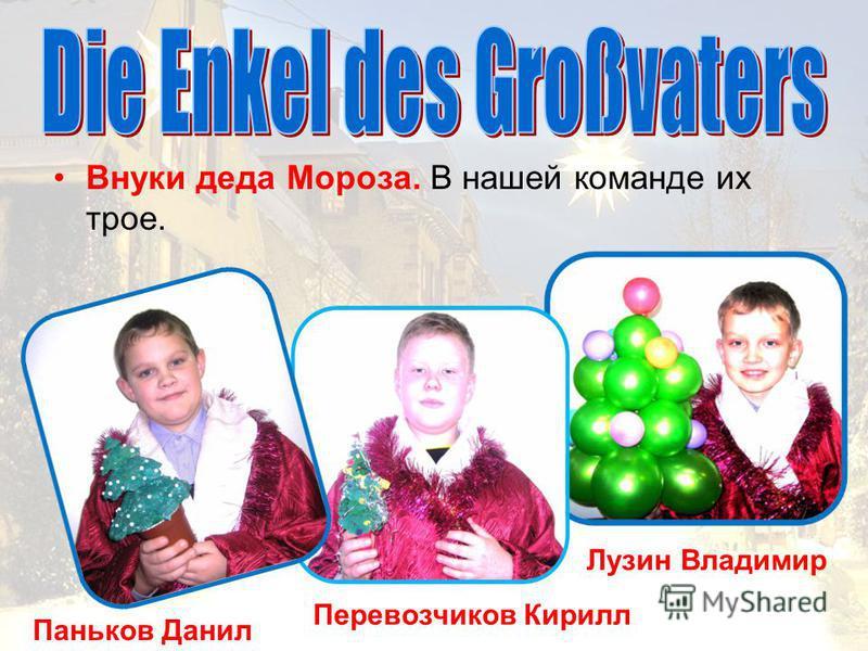 Паньков Данил Перевозчиков Кирилл Лузин Владимир Внуки деда Мороза. В нашей команде их трое.
