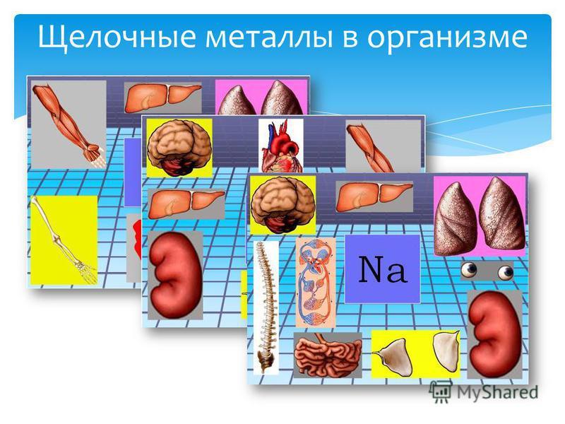 Щелочные металлы в организме