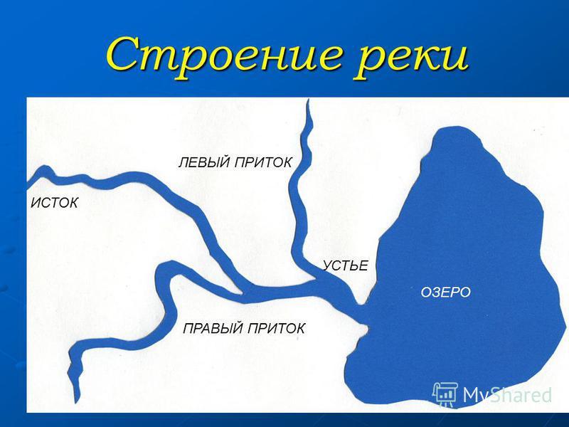 Строение реки ИСТОК ПРАВЫЙ ПРИТОК ЛЕВЫЙ ПРИТОК УСТЬЕ ОЗЕРО