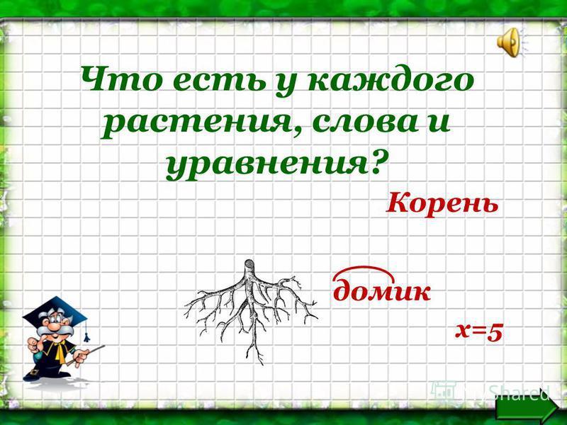 Что есть у каждого растения, слова и уравнения? Корень домик х=5