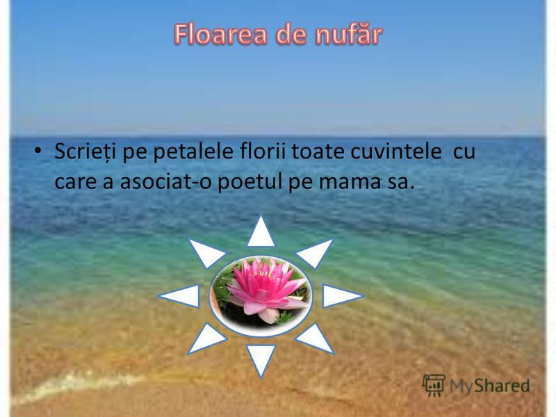 Scrieți pe petalele florii toate cuvintele cu care a asociat-o poetul pe mama sa.