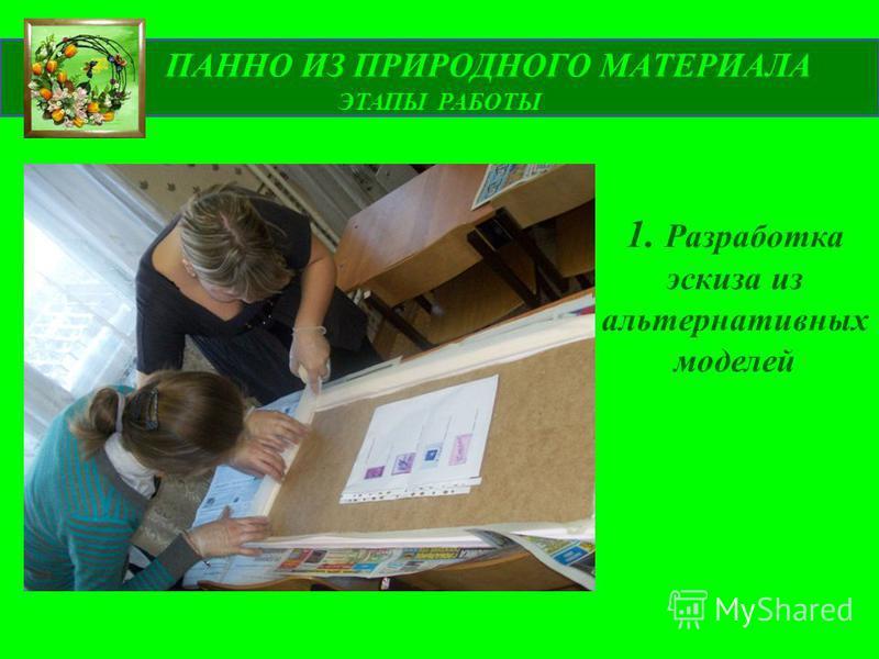 ПАННО ИЗ ПРИРОДНОГО МАТЕРИАЛА ЭТАПЫ РАБОТЫ 1. Разработка эскиза из альтернативных моделей