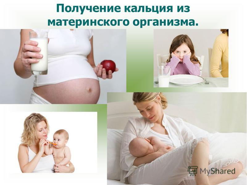 Получение кальция из материнского организма.