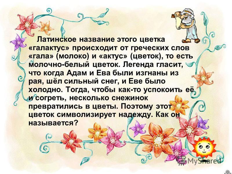 Латинское название этого цветка «галкактус» происходит от греческих слов «гала» (молоко) и «кактус» (цветок), то есть молочно-белый цветок. Легенда гласит, что когда Адам и Ева были изгнаны из рая, шёл сильный снег, и Еве было холодно. Тогда, чтобы к
