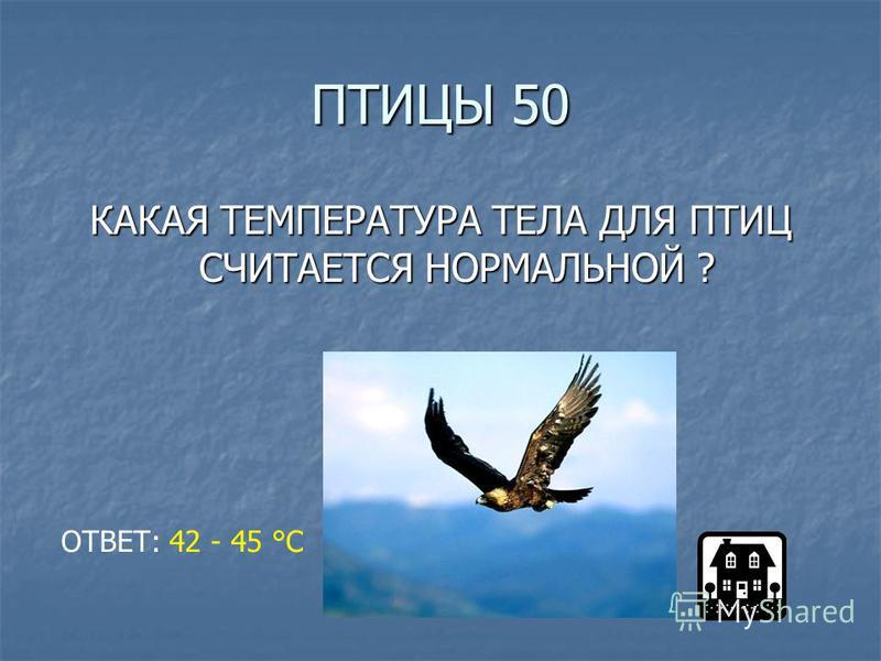 ПТИЦЫ 50 КАКАЯ ТЕМПЕРАТУРА ТЕЛА ДЛЯ ПТИЦ СЧИТАЕТСЯ НОРМАЛЬНОЙ ? ОТВЕТ: 42 - 45 °С