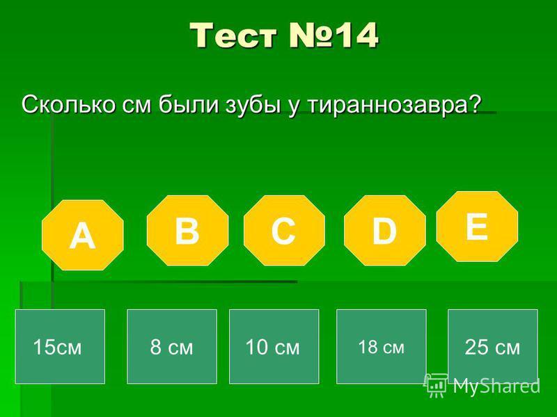 Тест 14 Сколько см были зубы у тираннозавра? A BCD E 15 см 8 см 10 см 18 см 25 см