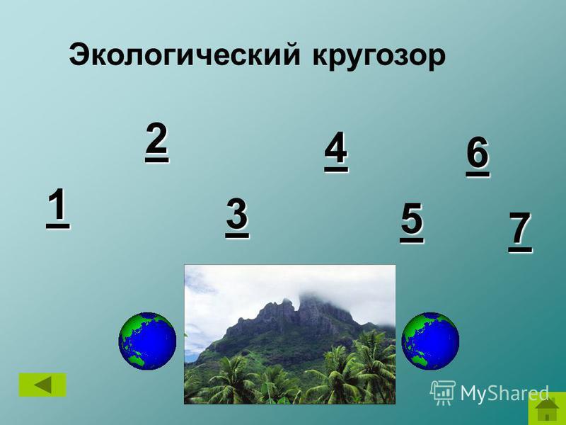 Экологический кругозор 1 11 1 2 22 2 3 33 3 4 44 4 6 66 6 5 55 5 7 77 7