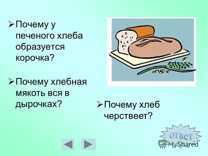 Почему у печеного хлеба образуется корочка? Почему хлеб черствеет? Почему хлебная мякоть вся в дырочках?