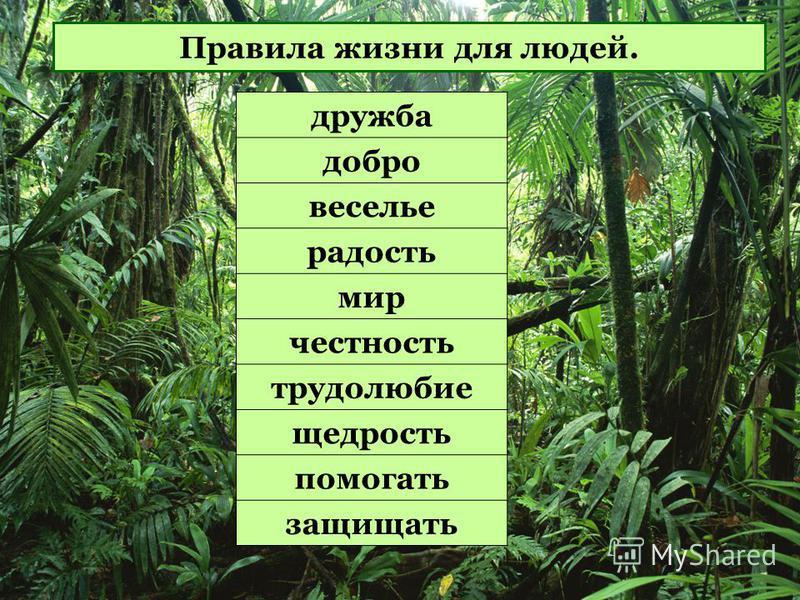 дружба добро веселье радость мир честность трудолюбие щедрость помогать защищать Правила жизни для людей.