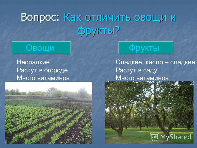 Вопрос: Как отличить овощи и фрукты? Овощи Фрукты Несладкие Растут в огороде Много витаминов Сладкие, кисло – сладкие Растут в саду Много витаминов