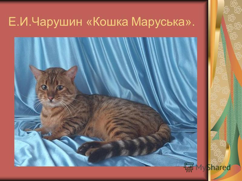 Е.И.Чарушин «Кошка Маруська».