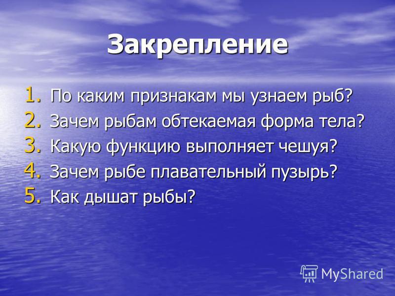 Закрепление 1. По каким признакам мы узнаем рыб? 2. Зачем рыбам обтекаемая форма тела? 3. Какую функцию выполняет чешуя? 4. Зачем рыбе плавательный пузырь? 5. Как дышат рыбы?