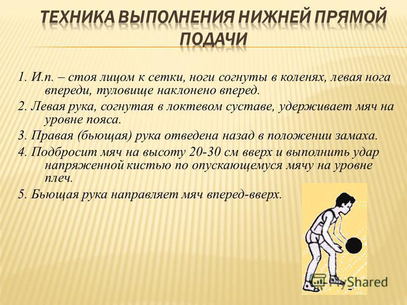 1. И.п. – стоя лицом к сетки, ноги согнуты в коленях, левая нога впереди, туловище наклонено вперед. 2. Левая рука, согнутая в локтевом суставе, удерживает мяч на уровне пояса. 3. Правая (бьющая) рука отведена назад в положении замаха. 4. Подбросит м