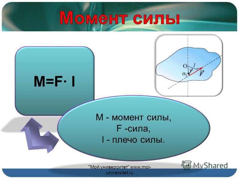Опыт показывает… Мой университет www.moi- universitet.ru