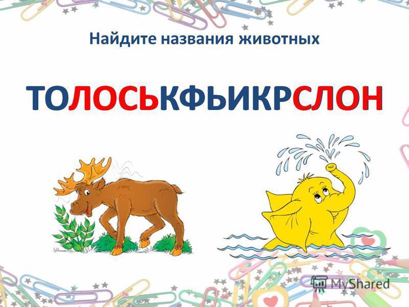 Найдите названия животных ТОЛОСЬКФЬИКРСЛОН