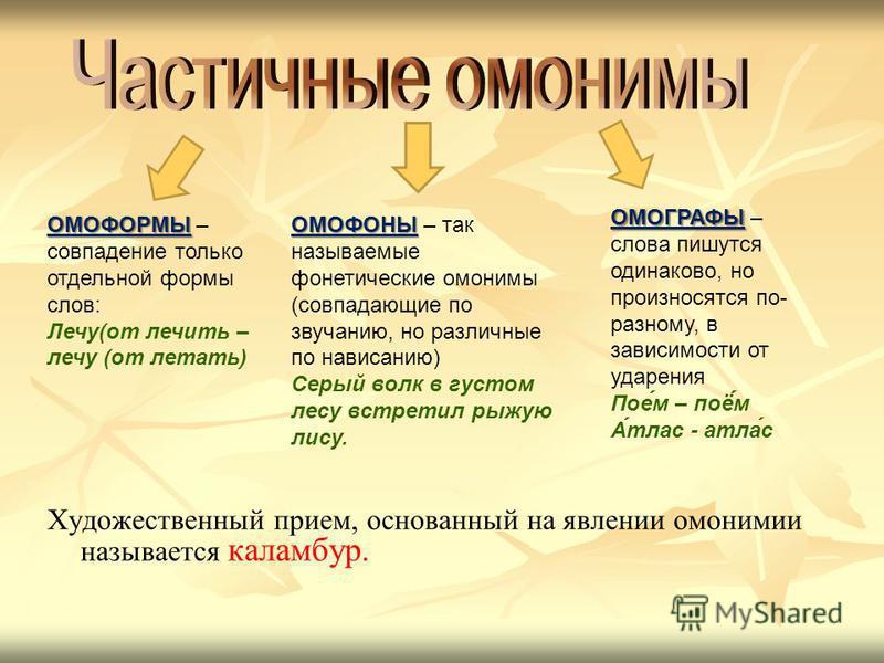 Урок русского языка в 5 классе с презентацией омонимы синонимы антонимы