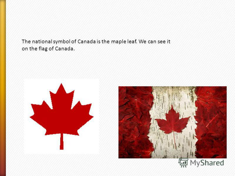 The national symbol of Canada is the maple leaf. We can see it on the flag of Canada.