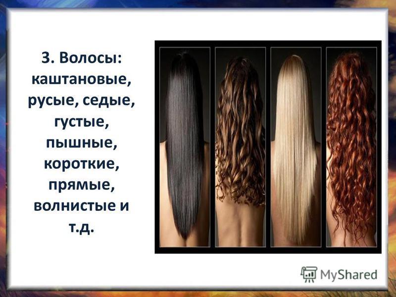 3. Волосы: каштановые, русые, седые, густые, пышные, короткие, прямые, волнистые и т.д.