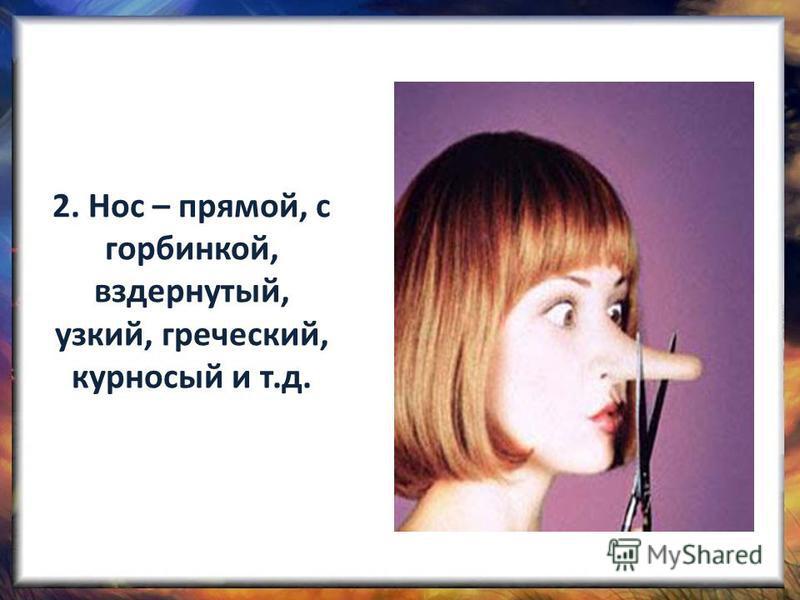 2. Нос – прямой, с горбинкой, вздернутый, узкий, греческий, курносый и т.д.