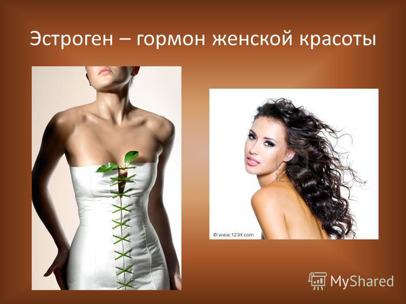 Эстроген – гормон женской красоты
