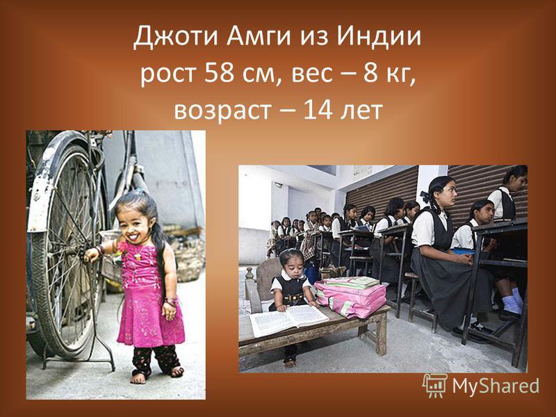 Джоти Амги из Индии рост 58 см, вес – 8 кг, возраст – 14 лет