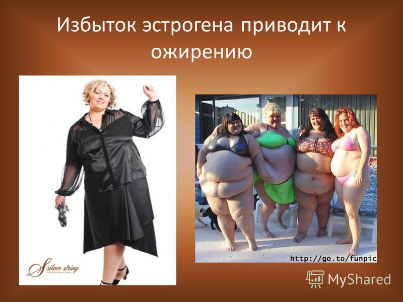 Избыток эстрогена приводит к ожирению