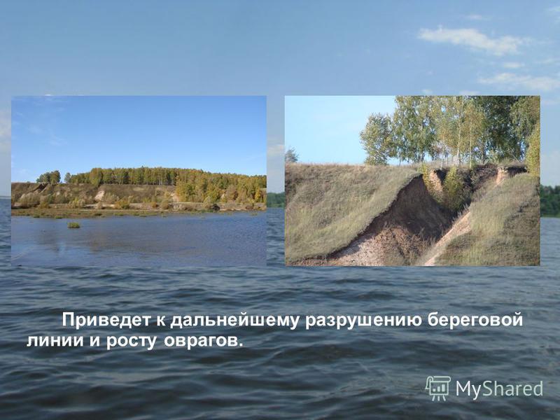 Приведет к дальнейшему разрушению береговой линии и росту оврагов.