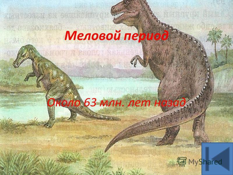 Около 63 млн. лет назад