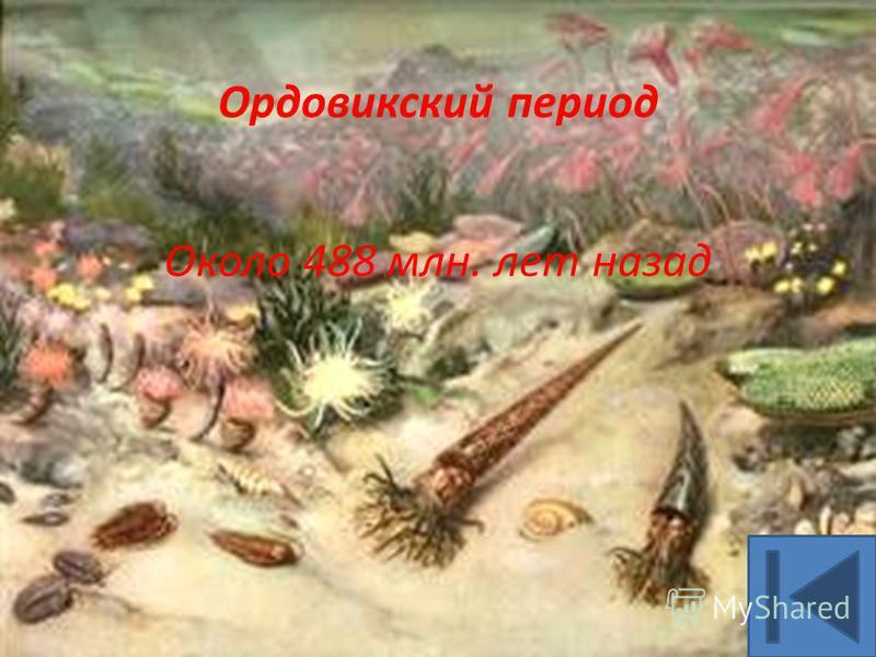 Ордовикский период Около 488 млн. лет назад